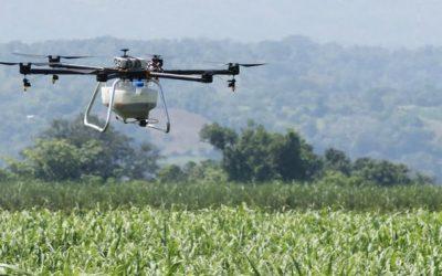 Los drones de fumigación que van donde los tractores no pueden